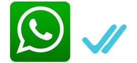 WhatsApp te indica con dos palomitas azules que tus mensajes ya fueron leídos